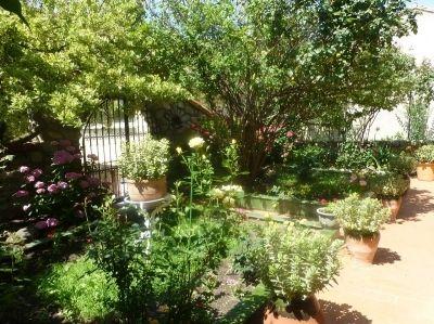 Logement pour curiste à Prats-de-Mollo-la-Preste photo 3 adv18121562