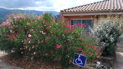 Logement pour curiste à Lamalou-les-Bains photo 1 adv23061800