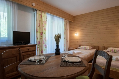 Logement pour curiste à Brides-les-Bains photo 2 adv30072374