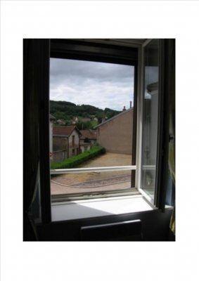 Logement pour curiste à Bains-les-Bains photo 5 adv0801689